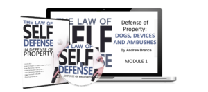 defense of property 3d boxshot AND Laptop
