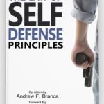 principles3d
