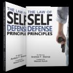 principles 2 copies boxshot 3d